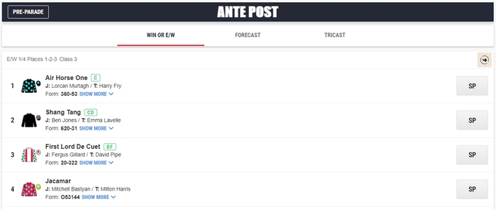 Ante post betting rules each way bench horse betting terms uk daily mail