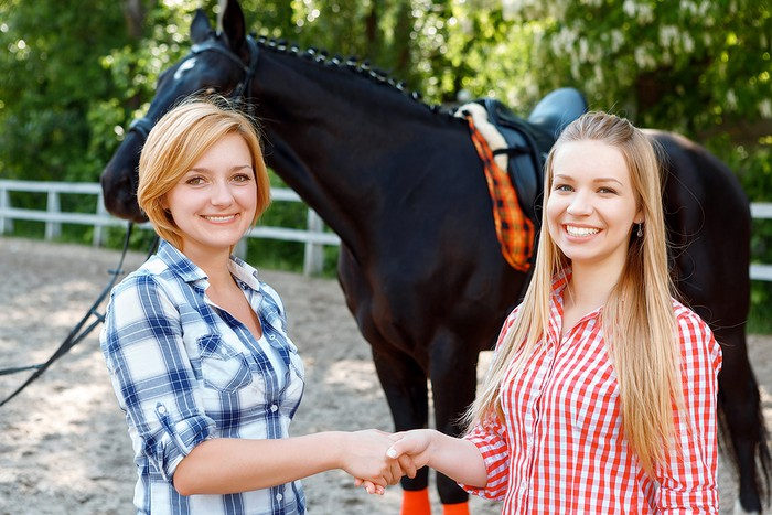 Buying a Horse privately
