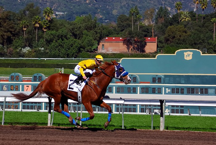 Dirt Horse Racing Track