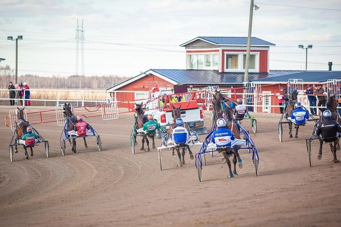Harness Racing Finland