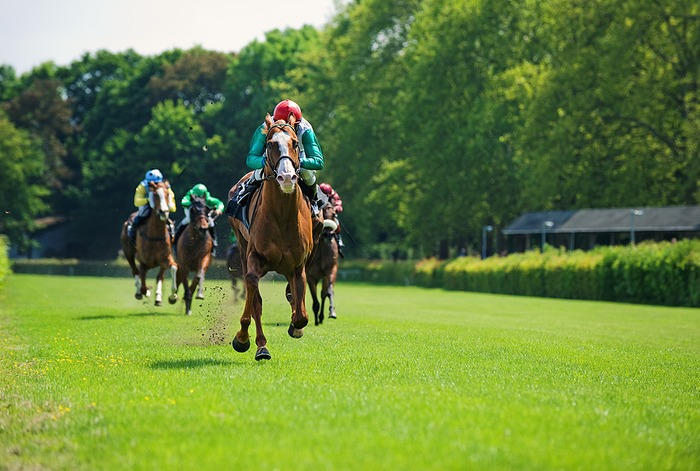 Horse Race and Turf