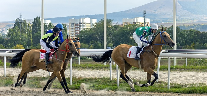 Horse Winning by a Length
