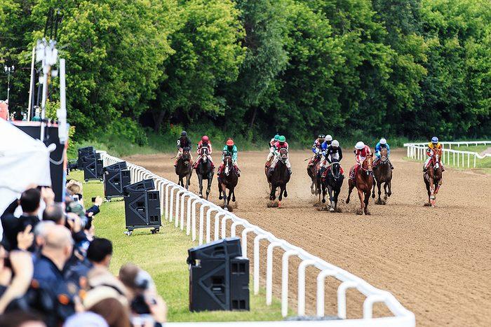Short Horse Race