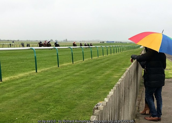 Watching Horse Race in the Rain