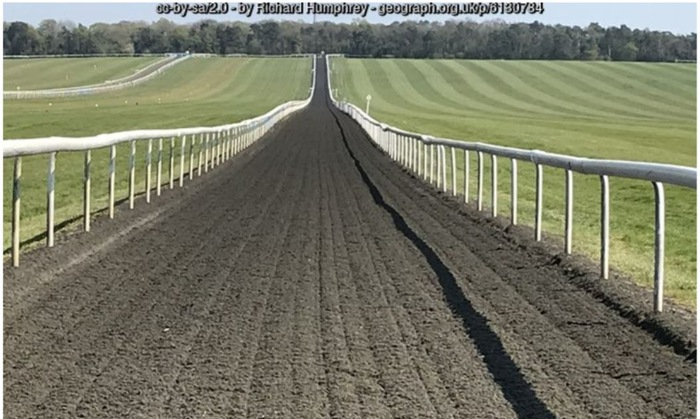 All Weather Racecourse